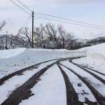 風景055(雪道)