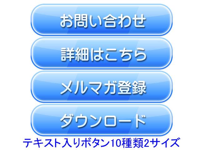 素材073(ボタン05/テキスト入り)