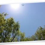 風景069(新緑/フォト風)