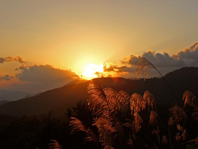 風景083(夕焼けに染まる山とススキ)