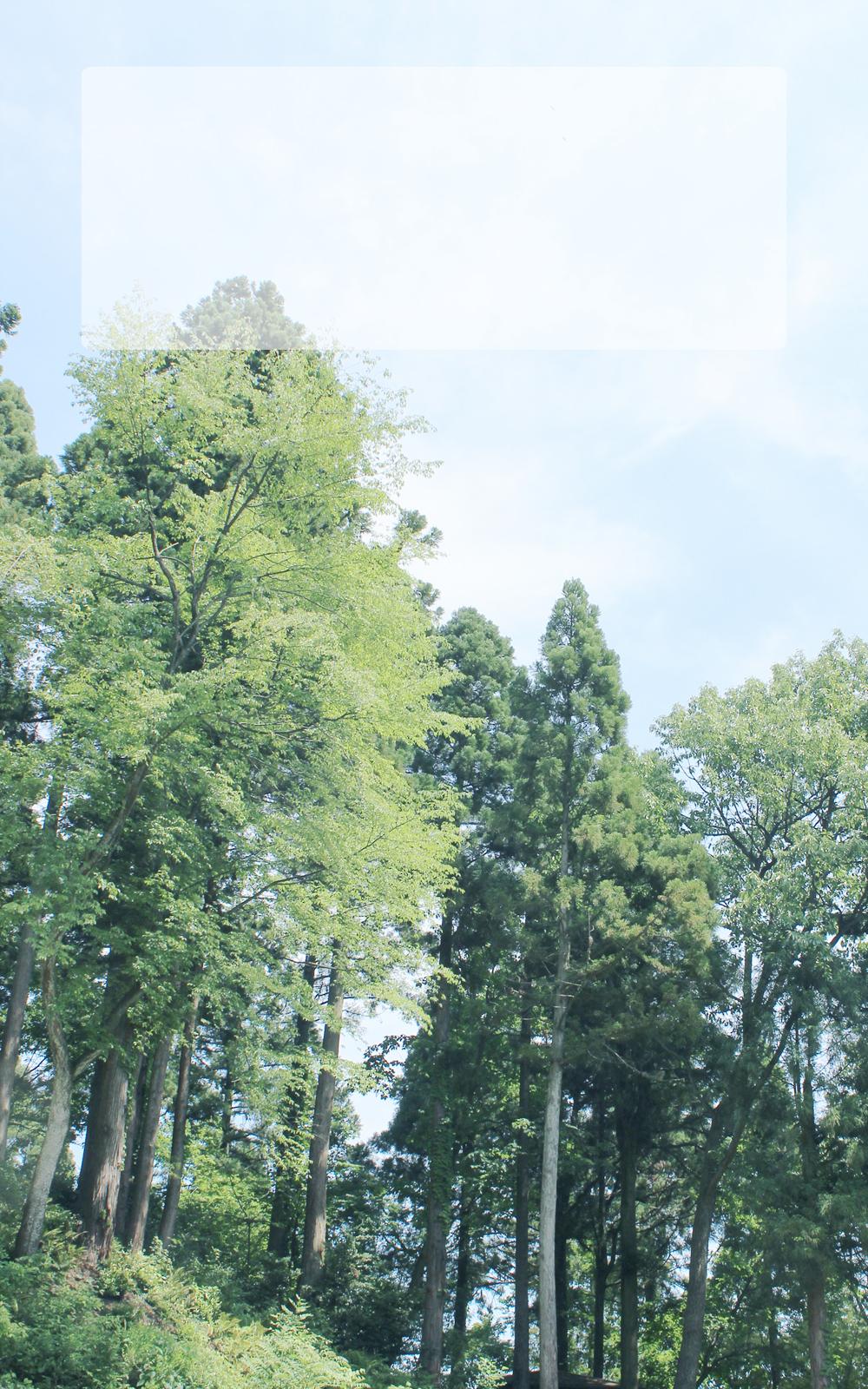 新緑の山の写真画像(P016)