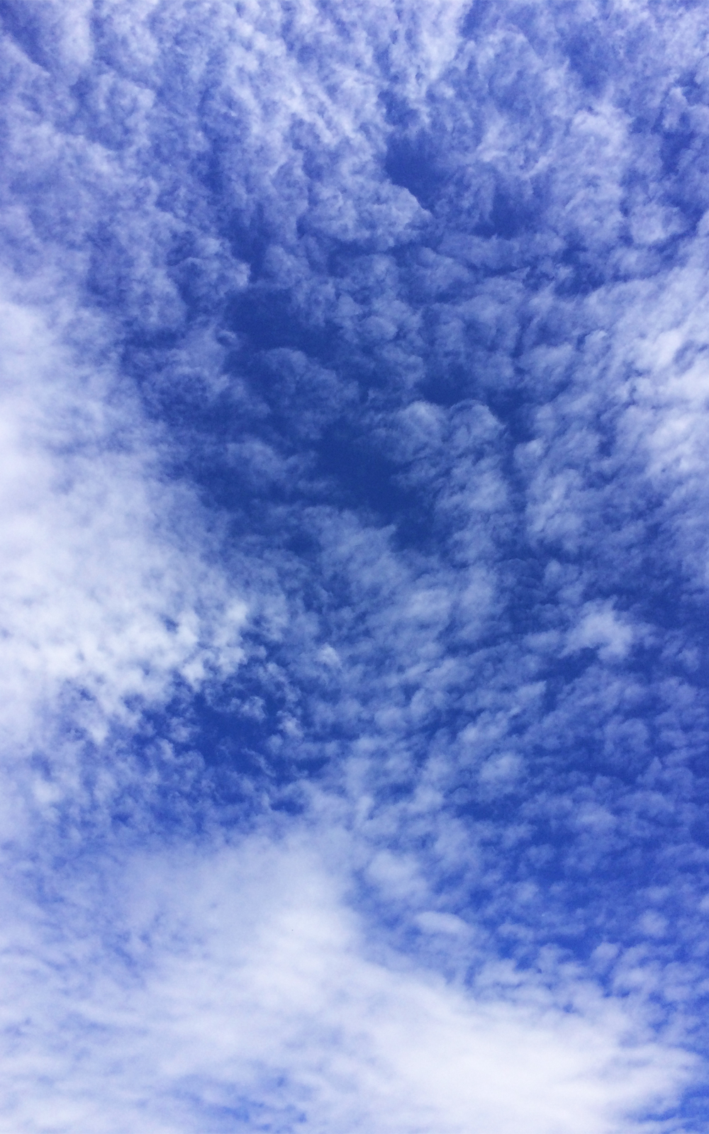 晴れ渡った空と雲の写真画像4(P031)