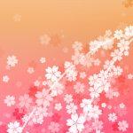 さくらの和風表紙画像(6a)