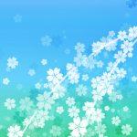さくらの和風表紙画像(6c)