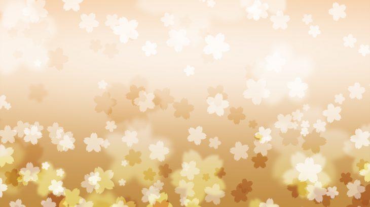 さくらの花の和風表紙画像(10c)